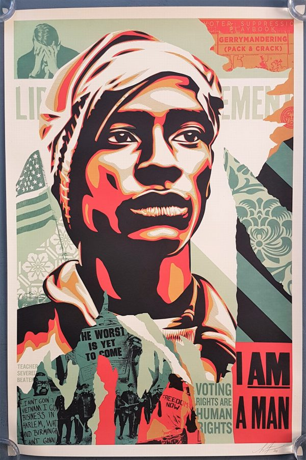 Voting Rights are Human Rights - Shepard Fairey