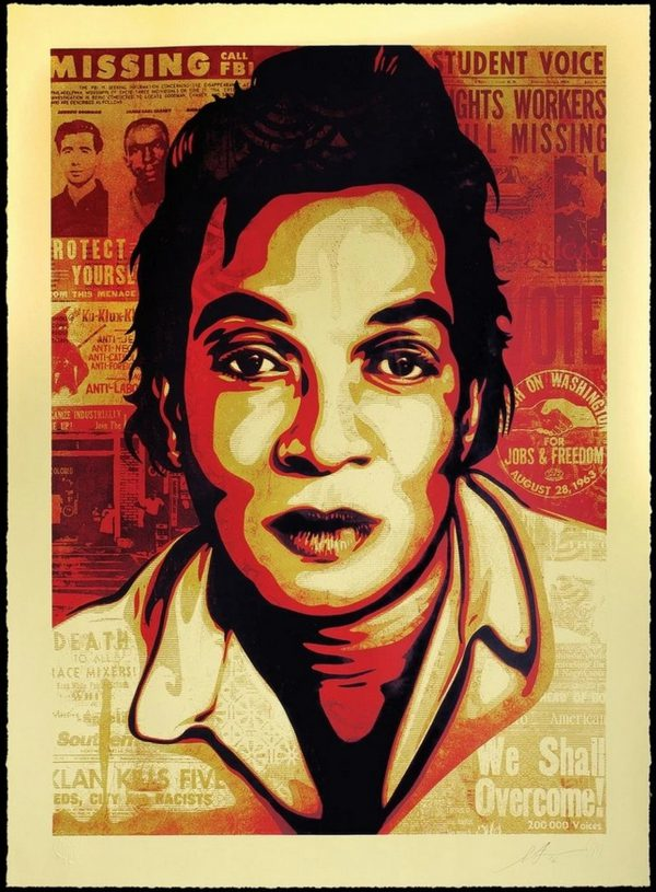 Voting Rights - Shepard Fairey